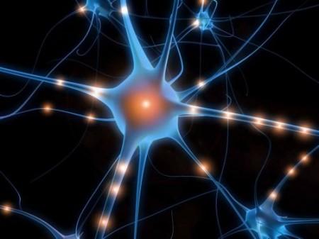 Cellule neuronali