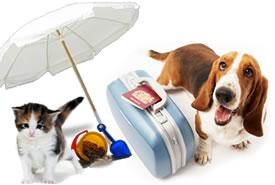 Animali domestici: non abbandonateli, portateli in vacanza!