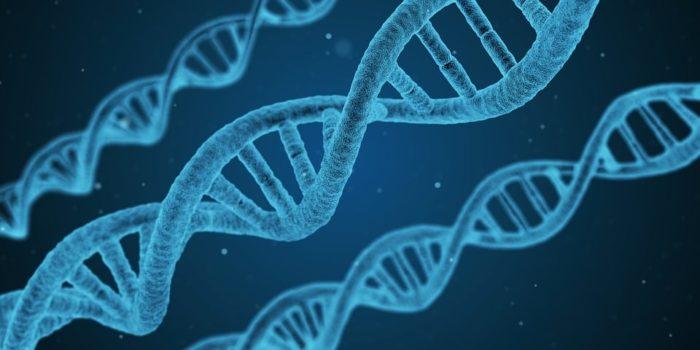 Investire in biotecnologie: arriva CRISPR